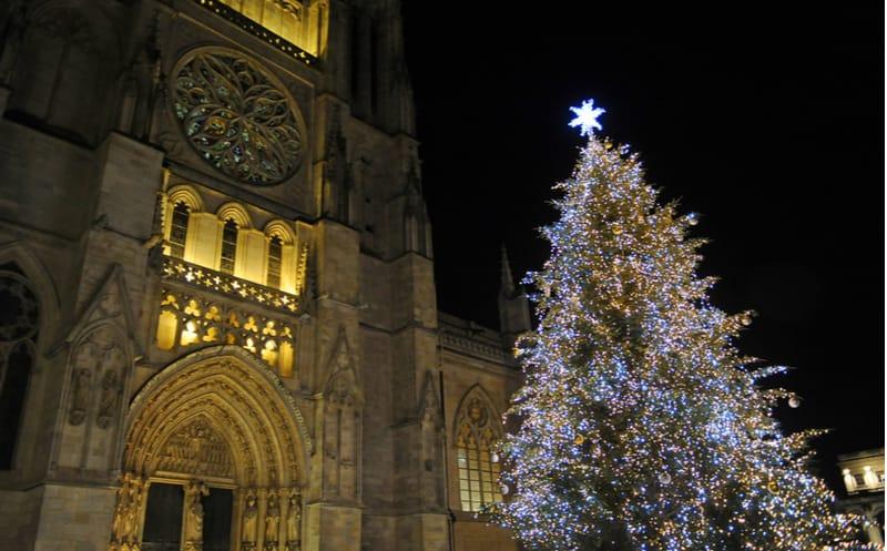 Bordeaux : un sapin de Noël offert par un élu ?
