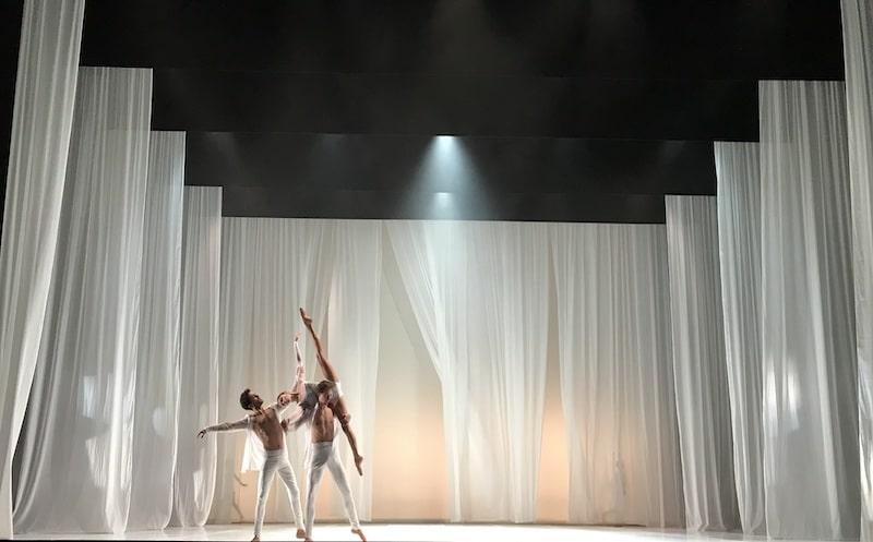 danseurs blanc spectacle