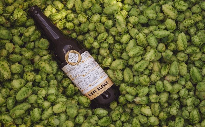 bières winterholer houblon