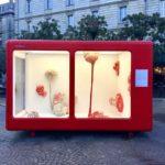 tinbox rouge